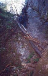 difficut steps on kimathanka trail