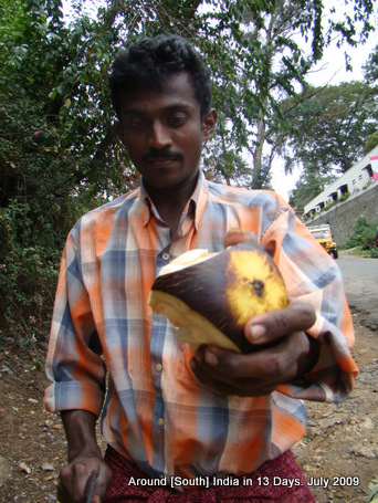 kodaikanal_hill_station_tamilnadu_india_14 (22)
