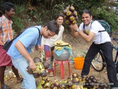 kodaikanal_hill_station_tamilnadu_india_15 (11)