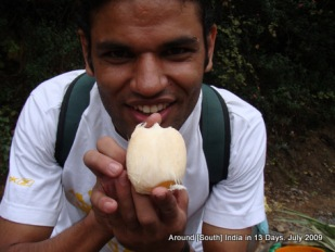 kodaikanal_hill_station_tamilnadu_india_15 (13)