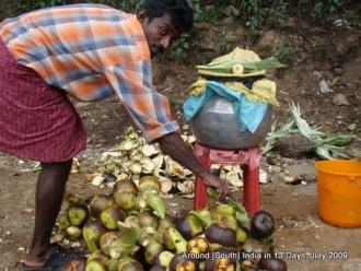 kodaikanal_hill_station_tamilnadu_india_15 (16)