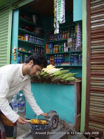 kodaikanal_hill_station_tamilnadu_india_15 (20)