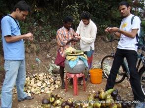 kodaikanal_hill_station_tamilnadu_india_15 (4)
