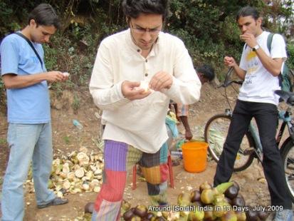 kodaikanal_hill_station_tamilnadu_india_15 (5)