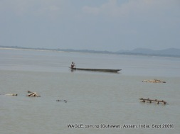 Brahmaputra river of assam