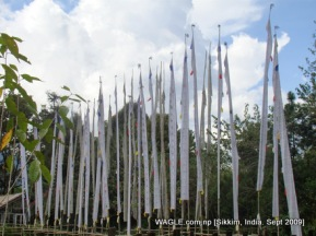 prayer flags of gangtok, sikkim