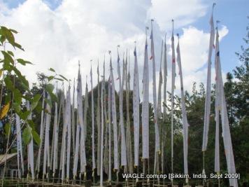 prayer flags of gangtok, sikkim