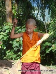 monks of gangtok, sikkim