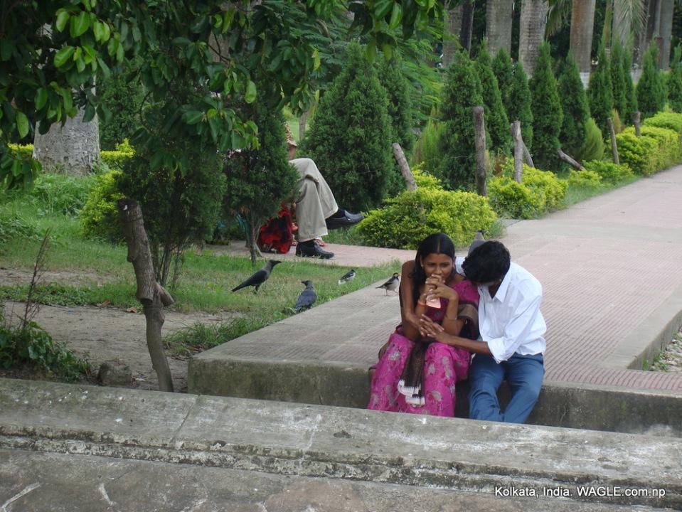lovebirds at a park in kolkata