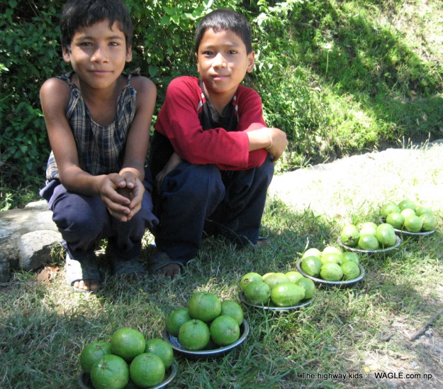 highway kids of nepal. selling guava
