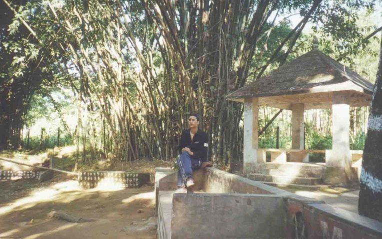 bamboos of budha subba temple 2001