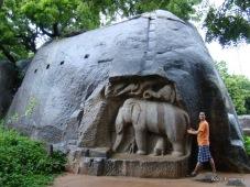 Elephant group at Mahabalipuram india stone carving monolith temples