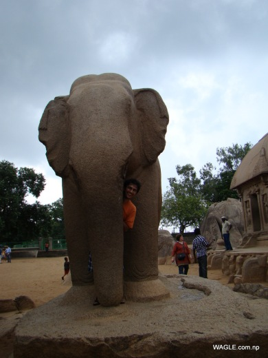 Elephant and Five Rathas. Mahabalipuram india stone carving monolith temples