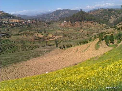 A Nepali village