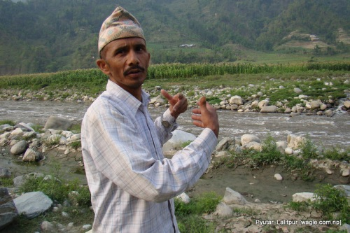 surendra bahadur sanjel shows his corn field on the bank of bagmati river