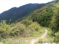 Kathmandu Kakani Jhor Hiking (45)