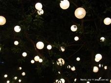 manila: light bulbs on a tree