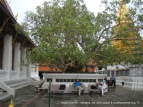 Temple of the Emerald Buddha (Wat Phra Kaew) and Grand Palace Bangkok (17)