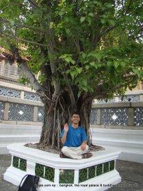 Temple of the Emerald Buddha (Wat Phra Kaew) and Grand Palace Bangkok (9)