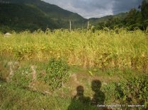 a nepali village of baglung galkot (4)