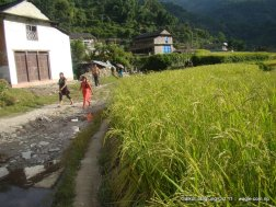 a nepali village of baglung galkot (5)