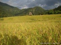 a nepali village of baglung galkot (6)