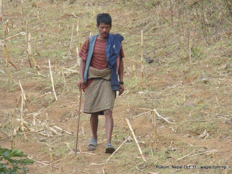 Shepherd near Cubang, Rukum