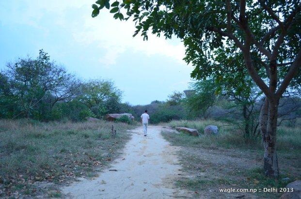 JNU Amphitheater DW Walk
