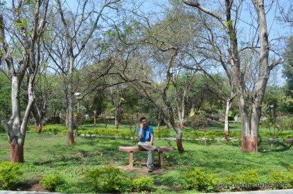 JNU Gardens