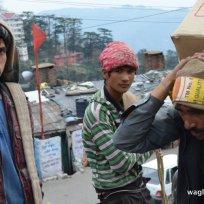 Nepali Porters of Shimla 5