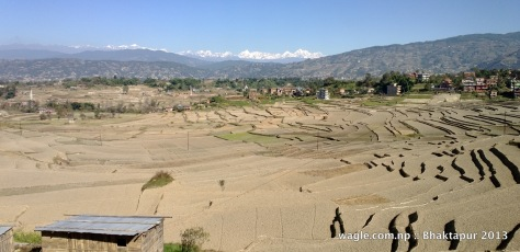 terraced fields and the mountains