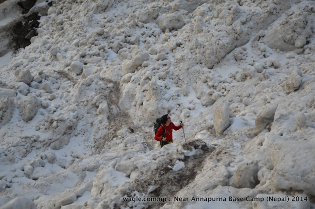 A trekker walks through an avalanche near Deurali-- about 1.5 hrs walk from Machhapuchhre (Fishtail) Base Camp.