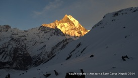 Rays of the setting sun hit Mt Machhapuchhre