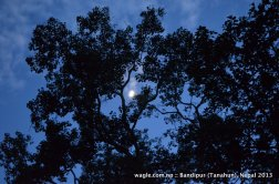 sky above bandipur