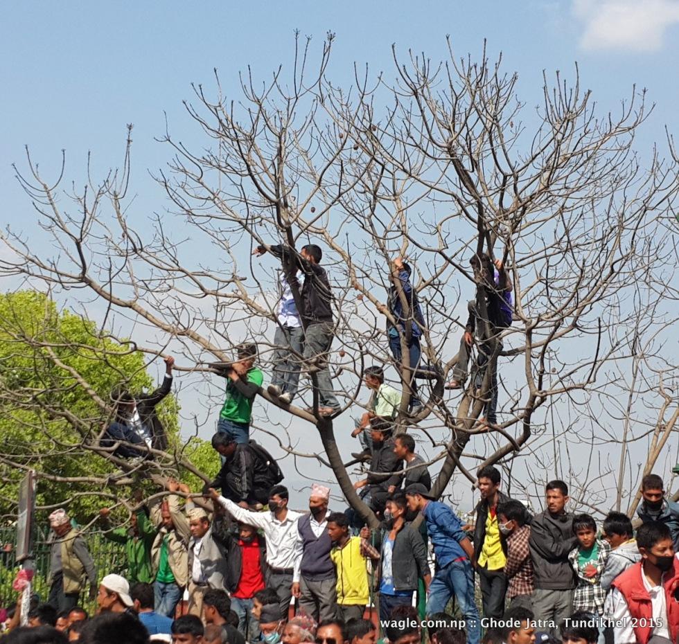 The tree men