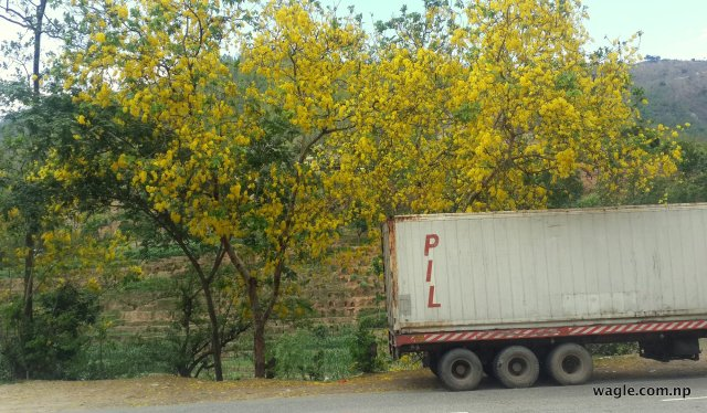 A lorry in Prithvi haighway
