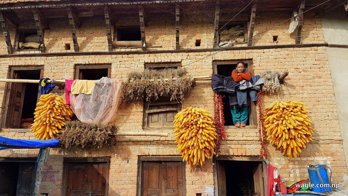 a-woman-of-bajrabarahi-village