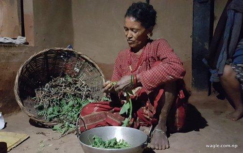 घरमुली महिला